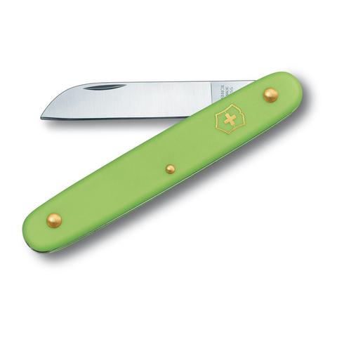 Нож Victorinox EcoLine Floral, 100 мм, 1 функция, салатовый (3.9050.47B1)
