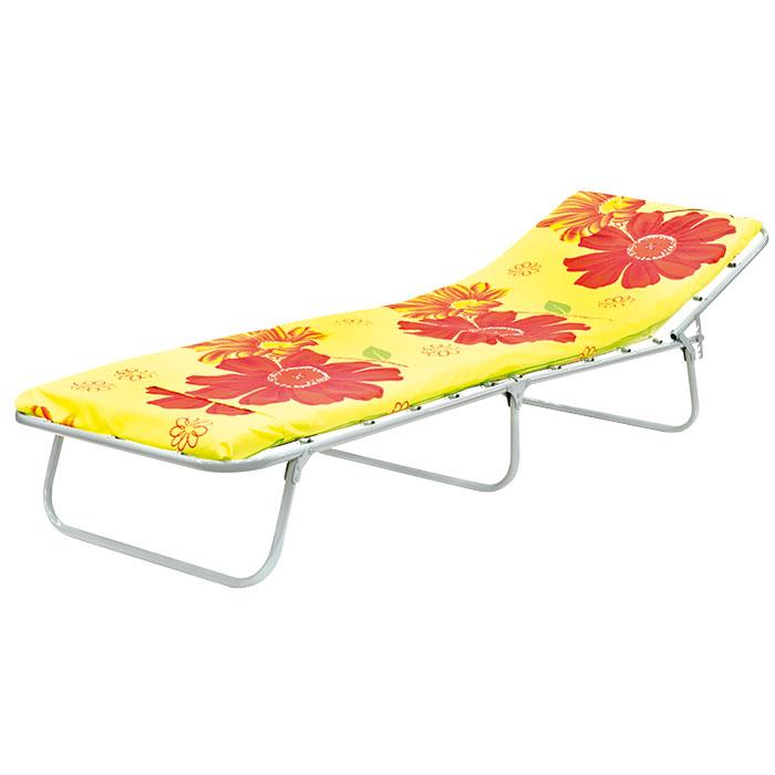 Раскладушка Эконом М60 Эконом М600 (раскладная кровать с матрасом и подголовником)