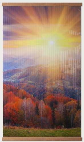 Инфракрасный пленочный обогреватель Домашний очаг 500 Вт картинка Осенний лес