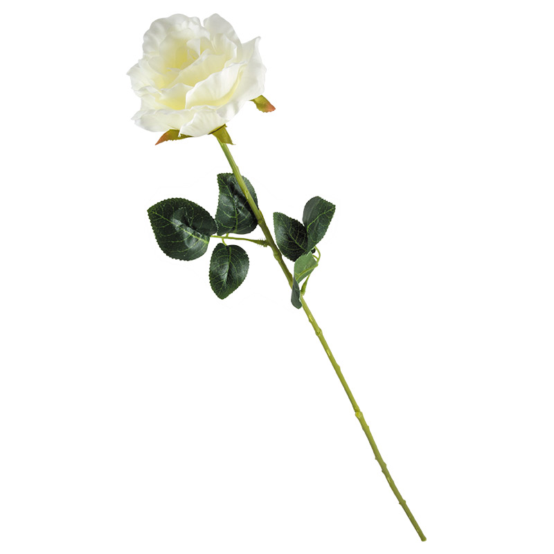 Цветок Роза (003841)