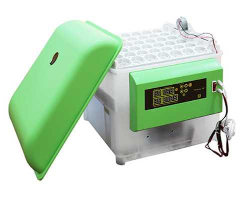 Инкубатор бытовой универсальный Спектр-84-01 на 84 куриных яйца, 220В 12В, автоматический переворот